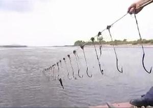 Как рыбачить на сома