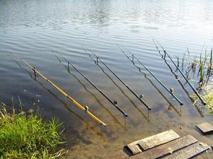 Поплавочная удочка подойдет для рыбалки с берега.