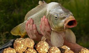 как приготовить прикормку для рыбалки на леща