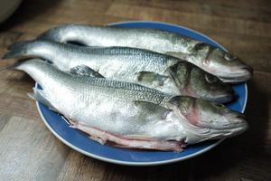 Польза от приема в пищу рыбы сибас