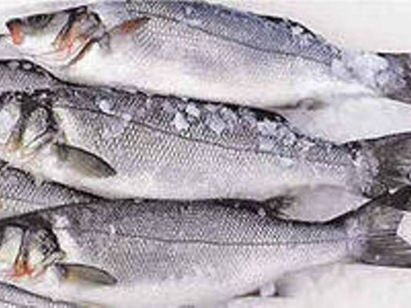 Рыба сибас и ее питательные свойства