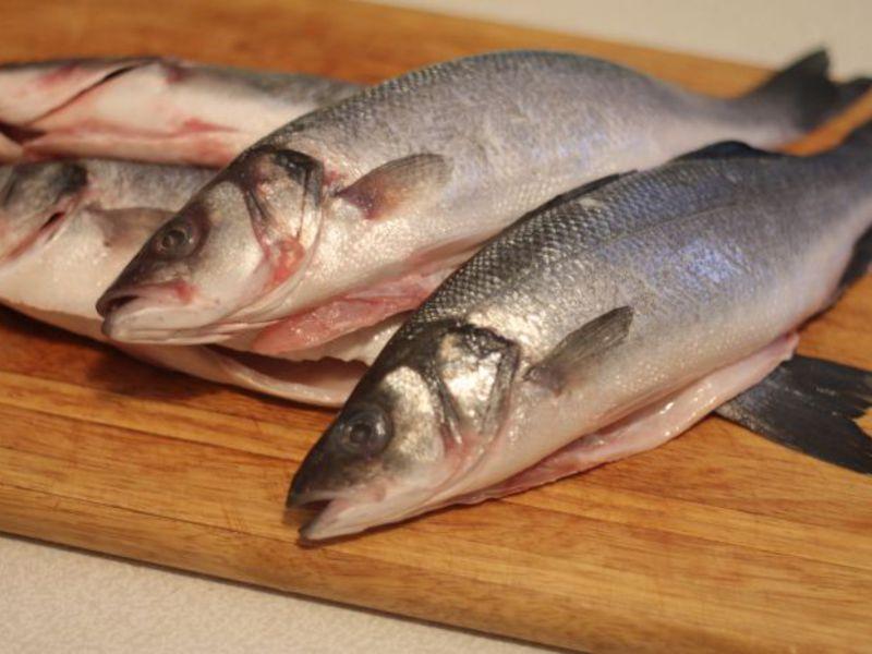 Ловля рыбы сибас