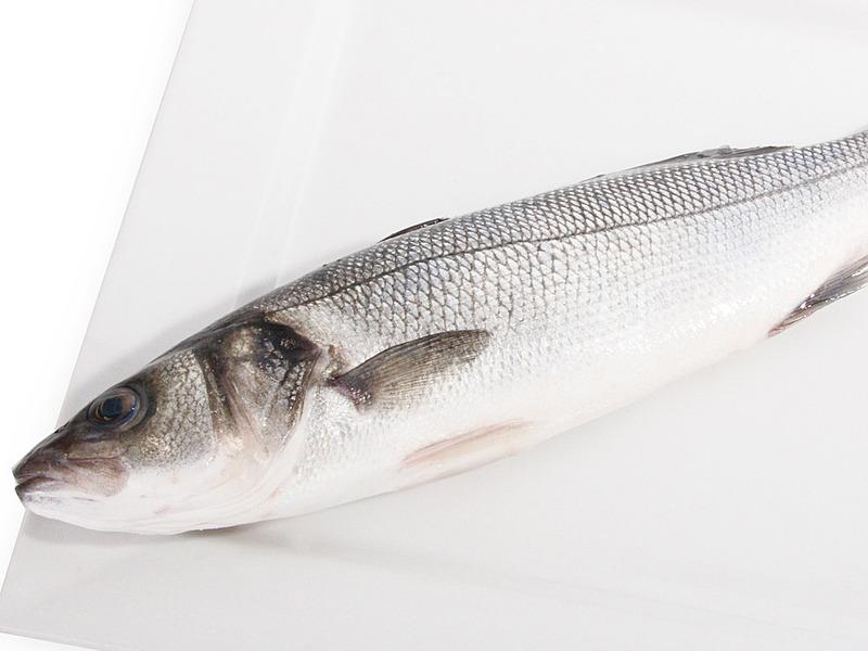 В каких водах обитает рыба сибас