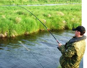 Как ловить карасей летом