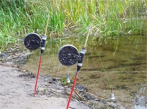 Донка-резинка позволяет рыбачить на одном месте очень результативно.