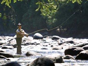 Особенности способов ловли рыбы жереха