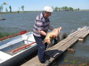 Что советуют рыбаки