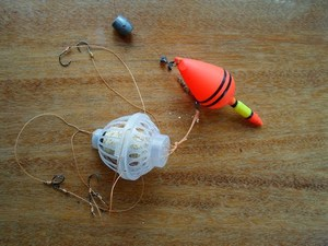 убийца толстолоба технопланктон