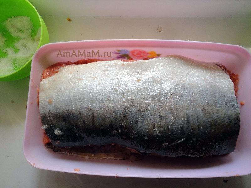 Рецепты торта медовый с фото