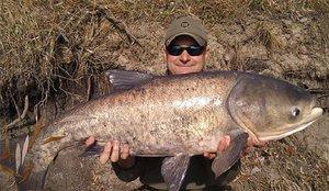 fishhungry опт