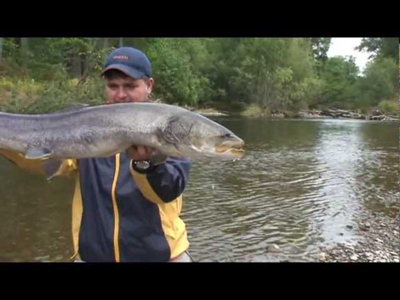 рыбалка на реках ленка тайменя видео