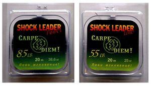 Что такое шок-лидер