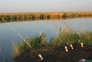 Ловля судака на донку является единственным пассивным способом ловли судака в летнее время
