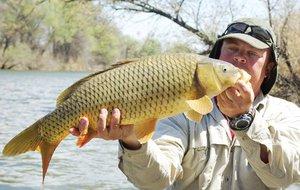 основа для прикормки рыбы