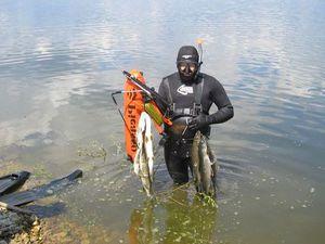 Ружье для охоты под водой своими руками