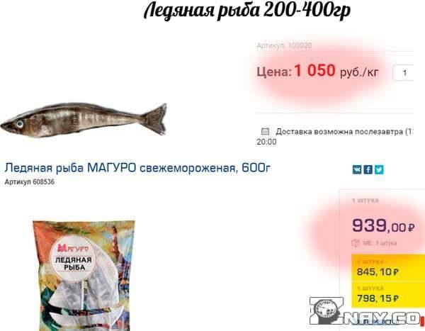 1555002534_pochemu-ledyanaya-ryba-takaya-dorogaya-6-4011286